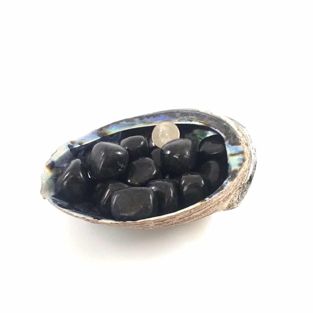 Fortune crystals_shungite_tumbled stone_big